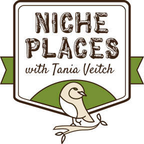 Explore Niche Places